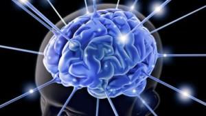 mozg-1542-2808748