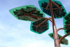 Solar_Tree_Ternopol-120416